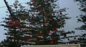 بلدية رام الله تنهي الإستعدادات لانارة شجرة الميلاد