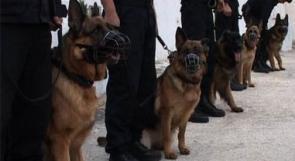 بالصور.. الشرطة الفلسطينية تحتفل بيوم الشرطة العربية