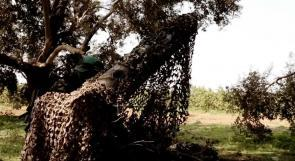 كتائب القسام تقصف حيفا بصاروخ R160