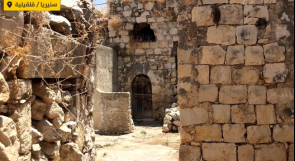 سنيريا القديمة قضاء قلقيلية.. مكب للنفايات ومأوى للأفاعي!