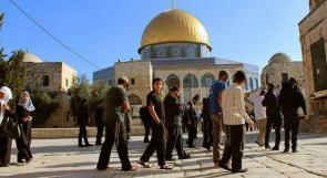 """""""لجنة القدس"""" تدعو لإفشال مخططات المستوطنين في اقتحام الأقصى عشية أعيادهم"""