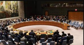 """مجلس الأمن يصادق على قرار تونسي فرنسي بشأن مكافحة فيروس """"كورونا"""""""