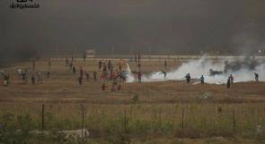 """الجمعة القادمة جمعة """"غزة صامدة ما وبتركعش"""""""