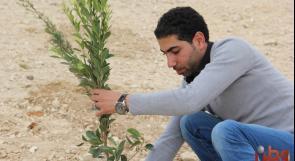 """بالفيديو والصور.. """"صوتنا فلسطين"""" تزرع 1000 شجرة في ريف بيت لحم لمواجهة تهديدات الاحتلال"""