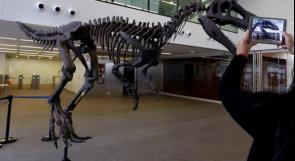 اكتشاف حفريات ديناصور من أكلة اللحوم بالأرجنتين