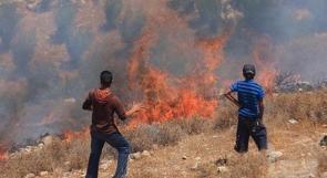 """مستوطنو """"يتسهار"""" يحرقون محاصيل وحقول زراعية في مادما"""
