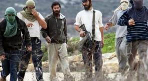 القوى الوطنية تدعو لتشكيل لجان حراسة لصد اعتداءات المستوطنين