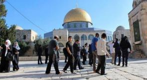 اقتحامات للمستوطنين وصلوات تلمودية في المسجد الأقصى