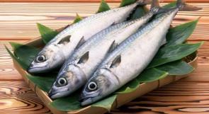 تناول الشباب للأسماك يحميهم من أمراض مزمنة في الشيخوخة