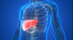 خمسة مكملات غذائية ينبغي تناولها من أجل صحة الكبد