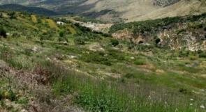 الاحتلال يخطر بالاستيلاء على قطعة أرض في ياسوف