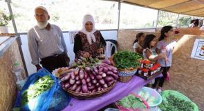 """مهرجان الباذنجان متنفّس للمزارعين في قرية """"بتير"""""""