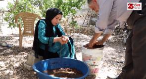 """عائلة حمران تحافظ على إنتاج """"رب الخروب"""" كتراث فلسطيني ومنتج صحي"""