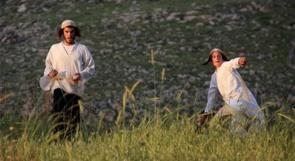 مستوطنون يقتلعون اشتال زيتون من أراضي سعير