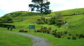 بالصور.. منازل الخرفان في نيوزيلاندا