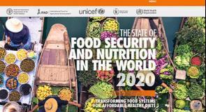 تقرير أممي: جائحة كورونا تضيف 83-132 مليون شخص للذين يعانون من النقص التغذوي في العالم