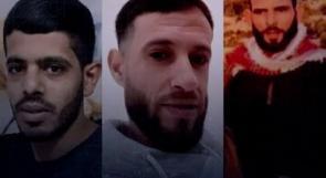 أحمد وزكريا ومحمود .. شهداء تقاسموا حب الوطن وارادة الصمود وشغف الحياة ومحبة الناس