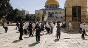88 مستوطنا إسرائيليا يقتحمون المسجد الأقصى