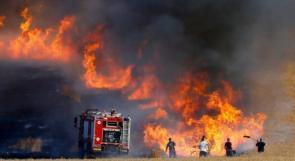 بفعل بالون من غزة .. حريق هائل في مستوطنة بئيري