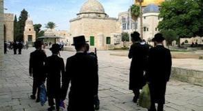 عشرات المستوطنين يقتحمون الاقصى بحماية من جنود الاحتلال