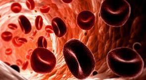 دماء الشباب تحد من الشيخوخة