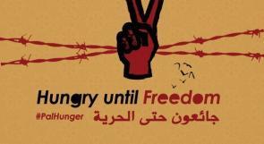 بالأسماء ... 12 أسيراً  يواصلون إضرابهم المفتوح عن الطعام