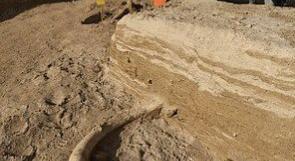 إكتشاف هيكل عظمي لحيوان الماموث في فرنسا
