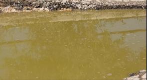 دار صلاح تناشد عبر وطن لحل مشكلة الصرف الصحي فيها