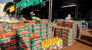 اتحاد المزارعين يؤكد لوطن ان الاحتلال لا يزال يمنع تصدير المنتجات الزراعية ويطالب الحكومة بكشف تفاصيل الاتفاق مع اسرائيل