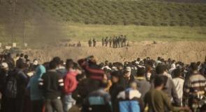في ذكرى يوم الأرض الشعب الفلسطيني يزداد صلابة والاحتلال يزداد شراسة
