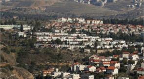 الاحتلال ينوي المصادقة على مصادرة 68 دونما من أراضي قلقيلية