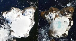 """""""ناسا"""" ترصد الكارثة الحقيقية في القارة القطبية الجنوبية نتيجة الحرارة المرتفعة"""