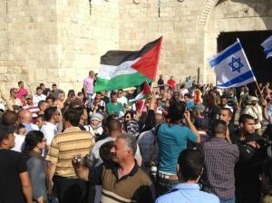 بالفيديو.. المستوطنون يستبيحون القدس