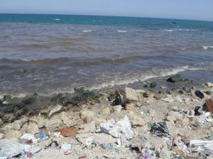 """من باص المدونين البيئيين: """"بقع سوداء تكسو شواطئ بحر غزة"""""""