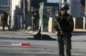 شرطة الاحتلال منعت تقديم العلاج لجريحة فلسطينية طوال ساعة ونصف
