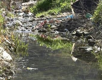 وادي عارورة مكب للنفايات والمياه العادمة!