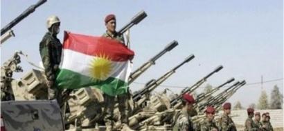 وكالة الانباء الايطالية: القوات الكردية فبركت صور استسلام داعش