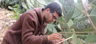 """خاص لـ""""وطن"""" بالفيديو.. نابلس : الفنان أحمد اختار الصبار أرضية للوحاته الإبداعية"""