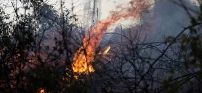 إجلاء سكان عن منازلهم عقب حرائق بغابات القدس