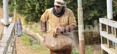 صور.. صيد السمك باليد من إبداعات مصور مصري توفي اليوم