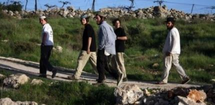 مستوطنون يقتحمون منطقة جدور الأثرية في بلدة بيت أمر بالخليل