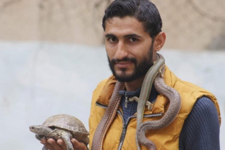 الشاب الغزي محمد حمدان...عاشق الطبيعة وصائد الأفاعي