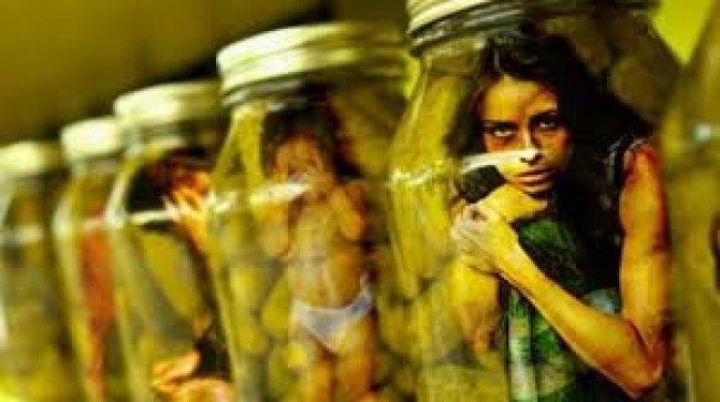 مصر تعلن ضبط شبكة دولية للإتجار بالبشر