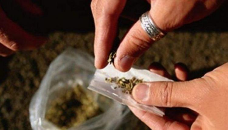ضبط مواد مخدرة في جنين