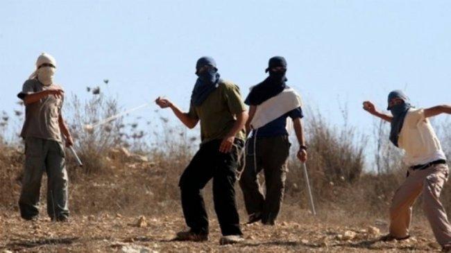 مستوطنون يهاجمون قرية عصيرة القبلية جنوب نابلس