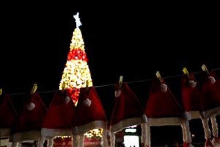 اضاءة شجرة الميلاد في نابلس