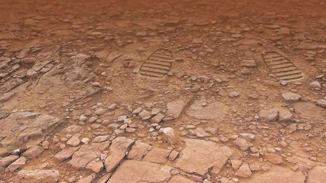"""اكتشاف """"أقدم آثار أقدام على الأرض""""!"""