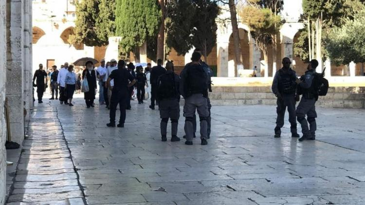 189 مستوطنا يقتحمون الأقصى بحراسة مشددة من شرطة الاحتلال
