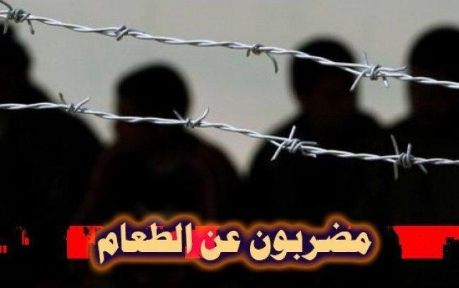 اللّجنة الإعلامية: الاحتلال يشنّ حملة تنقلات جديدة بحقّ عدد من الأسرى المضربين
