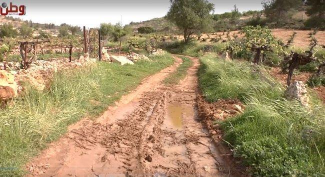 خاص بالفيديو| المستوطنون يضخون مياهاً عادمة في أراضي بيت أمر